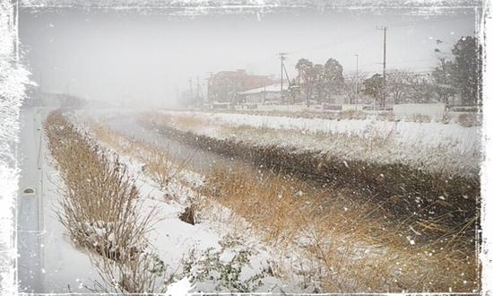 CYMERA_20140210_151653雪_R.jpg